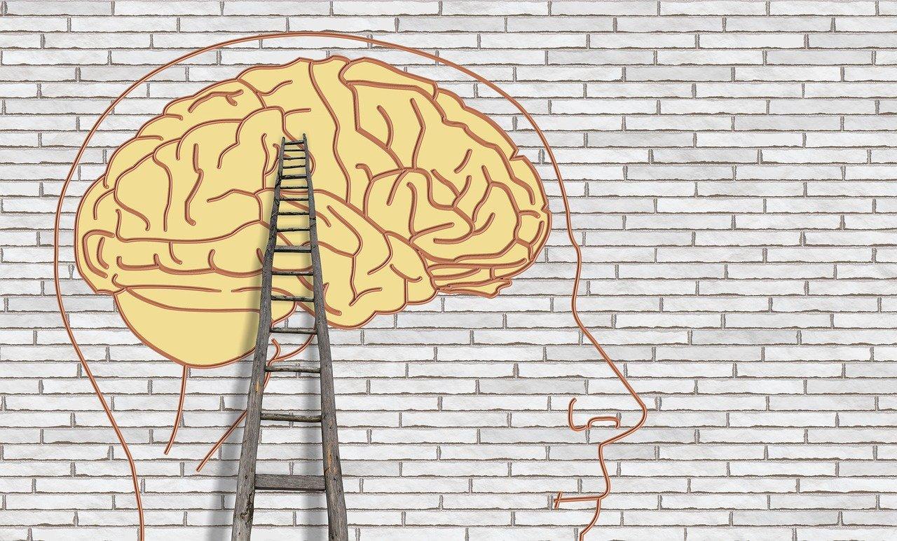 Er din rationelle hjerne med, når du træffer dine sundhedsvalg?