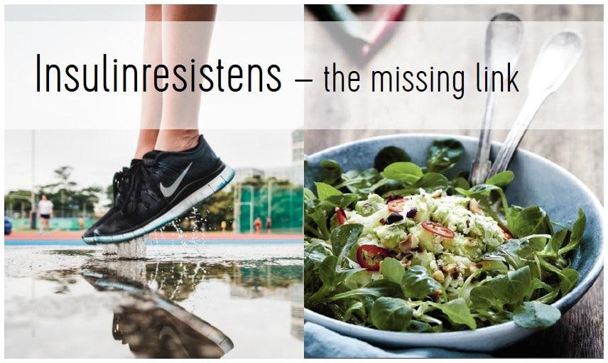 Insulinresistens – the missing link